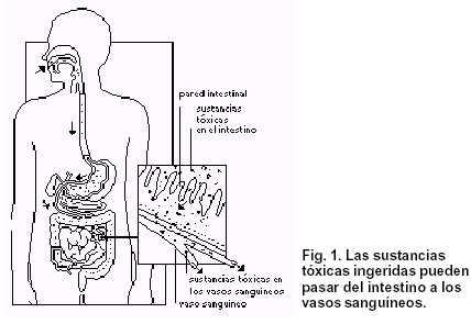 toxicos - fig1